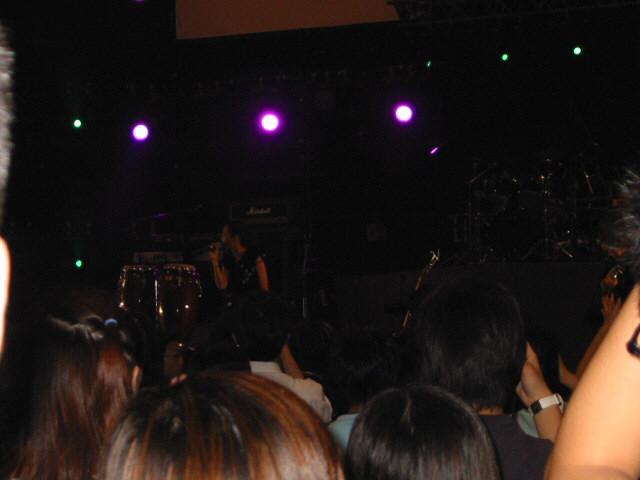 concert.JPG (57167 bytes)